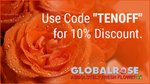 GlobalRose Coupon Code 20% off 2017