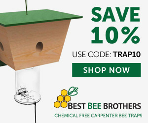 Best Bee Brothers Coupon Code and coupons