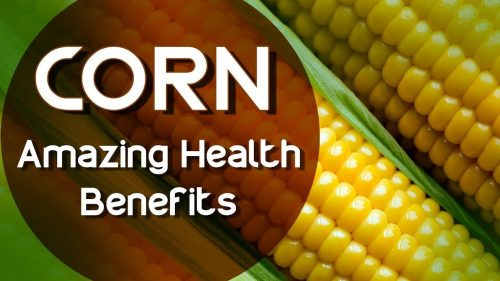 Amazing Health benefits of sweetcorn You should add it to Your diet